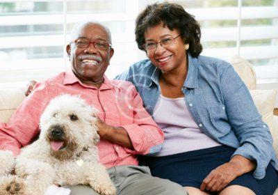 Healthy & Happy Pet Seminar